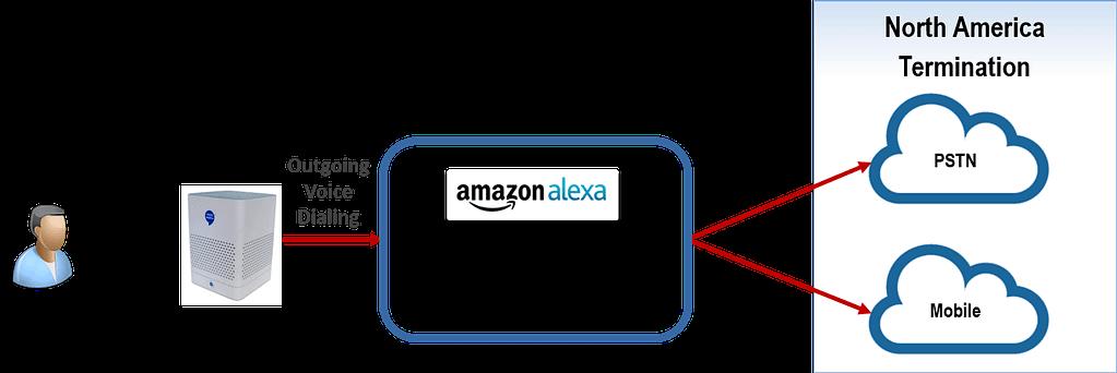 BT100 ACM with Alexa Calling